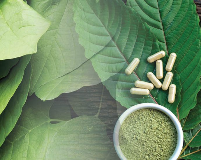 Presenting The Simple Option To Kratom Powder
